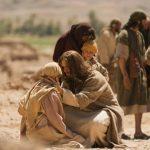 Conheça mais sobre as indulgências no Jubileu da Misericórdia